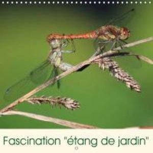 "Fascination ""étang de jardin"" (Calendrier mural 2015 300 × 300 m"