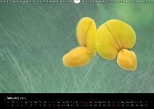 Forest Flowers (Wall Calendar 2015 DIN A3 Landscape)