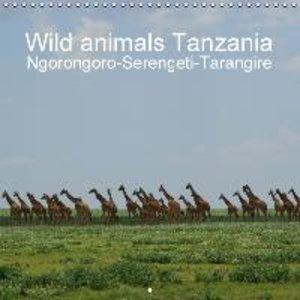 Wild animals Tanzania (Wall Calendar 2015 300 &times 300 mm Squa