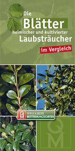 Die Blätter heimischer und kultivierter Laubsträucher im Verglei