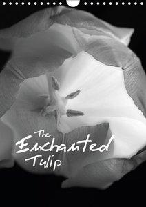 The Enchanted Tulip / 2015 (Wall Calendar 2015 DIN A4 Portrait)