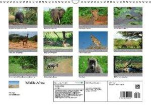 Wildlife Africa (Wall Calendar 2015 DIN A3 Landscape)