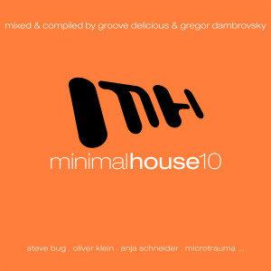 Minimal House 10