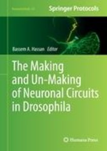 The Making and Un-Making of Neuronal Circuits in Drosophila
