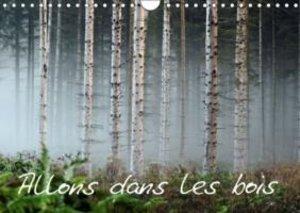 Allons dans les bois (Calendrier mural 2015 DIN A4 horizontal)