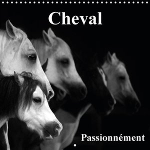 Cheval Passionnément (Calendrier mural 2015 300 × 300 mm Square)