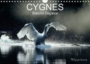CYGNES. Blanche Elégance (Calendrier mural 2015 DIN A4 horizonta