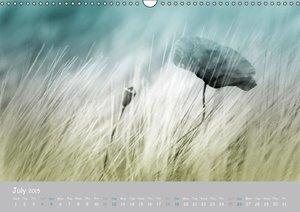 Poppy Love (Wall Calendar 2015 DIN A3 Landscape)