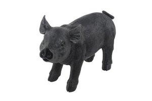 Spardose Spar Schweini, schwarz