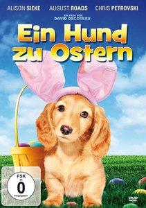 Ein Hund zu Ostern - Ein turbulentes Osterfest