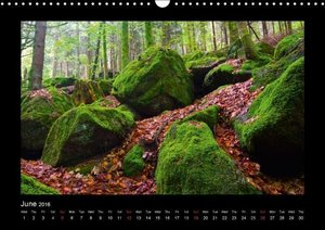 The Black Forest - UK Version (Wall Calendar 2016 DIN A3 Landsca
