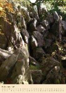 Bernds, U: Wonders of Nature / UK-Version