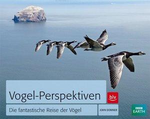 Vogel-Perspektiven