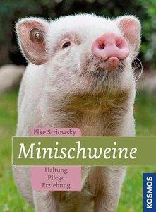 Striowsky, E: Minischweine