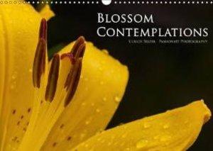 Blossom Contemplations (Wall Calendar 2015 DIN A3 Landscape)