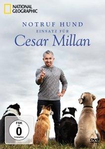 Notruf Hund - Einsatz für Cesar Millan