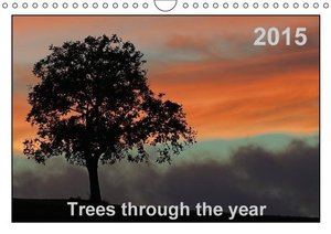 Wolf, G: Trees Through the Year (UK-Version)