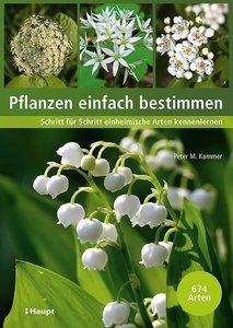 Pflanzen einfach bestimmen