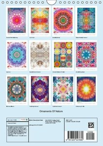 Ornaments Of Nature (Wall Calendar 2015 DIN A4 Portrait)