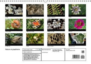 Nature et graphisme (Calendrier mural 2015 DIN A3 horizontal)
