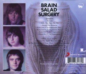 Brain Salad Surgery