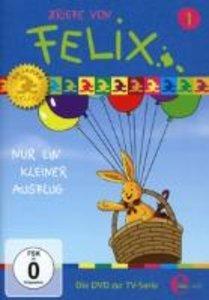 (1)DVD z.TV-Serie-Nur Ein Kleiner Ausflug