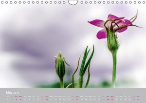 Tenderness of nature (Wall Calendar 2015 DIN A4 Landscape)