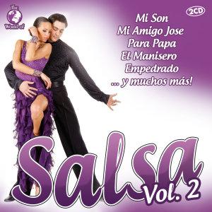 Salsa Vol.2
