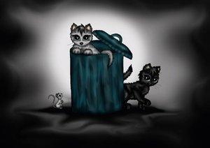 adorable little cats (Poster Book DIN A4 Landscape)