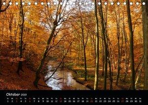 Faszinierendes Furlbachtal (Tischkalender 2019 DIN A5 quer)
