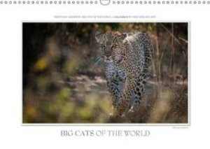 Emotional Moments: Big Cats of the World / UK-Version (Wall Cale