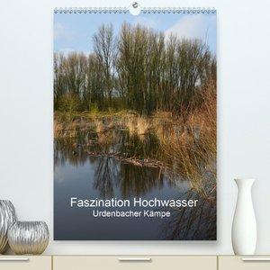 Faszination Hochwasser - Urdenbacher Kämpe(Premium, hochwertiger