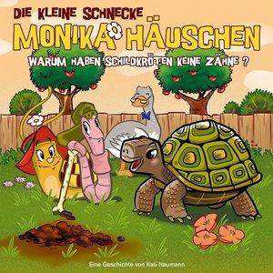 47: Warum Haben Schildkröten Keine Zähne?