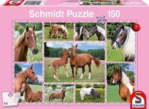Pferdeträume (Kinderpuzzle)
