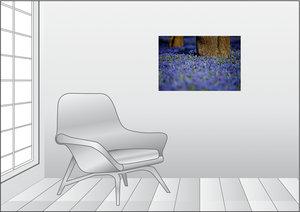 Premium Textil-Leinwand 75 cm x 50 cm quer Sibirischer Blaustern