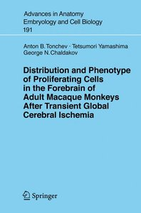 Distribution and Phenotype of Proliferating Cells in the Forebra