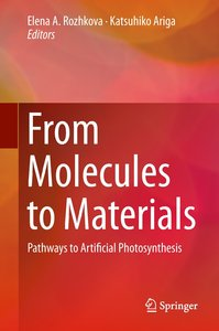 From Molecules to Materials-Pathways to Artificial Photosynthesi