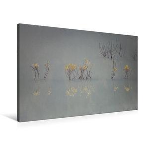 Premium Textil-Leinwand 90 cm x 60 cm quer Von güldenen Blätter