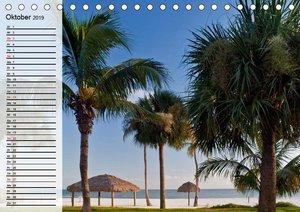 FLORIDA Idyllischer Sonnenscheinstaat (Tischkalender 2019 DIN A5