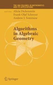 Algorithms in Algebraic Geometry