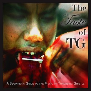 The Taste of TG (A Beginner\'s Guide To..)(2LP+MP3)
