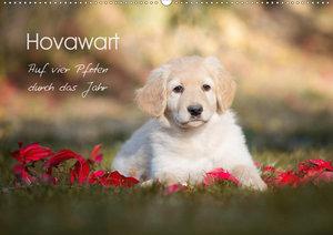 Hovawart - Auf vier Pfoten durch das Jahr