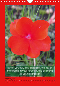 Flowerful Quoteful (Wall Calendar 2020 DIN A4 Portrait)