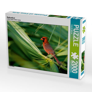 Rotkardinal 2000 Teile Puzzle quer