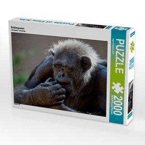 Schimpanse 2000 Teile Puzzle quer