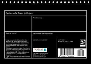 Zauberhafte Basenji-Welpen