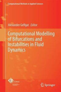 Computational Modelling of Bifurcations and Instabilities in Flu