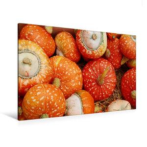 Premium Textil-Leinwand 120 cm x 80 cm quer Kürbisse