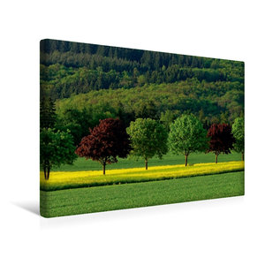 Premium Textil-Leinwand 45 cm x 30 cm quer Sommerfarben im Idste