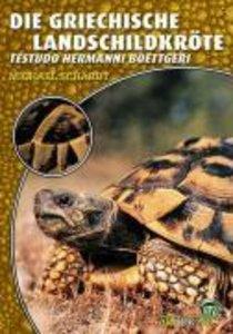 Die Griechische Landschildkröte